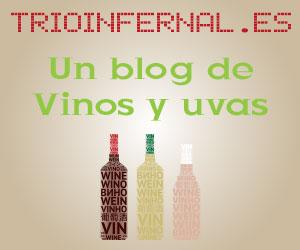 blog-de-vinos-y-uvas.jpg